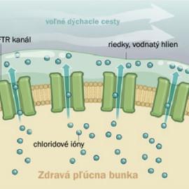 Liek na vylepšenie mutácie G551D pri cystickej fibróze