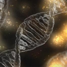 Cystická fibróza a genetika